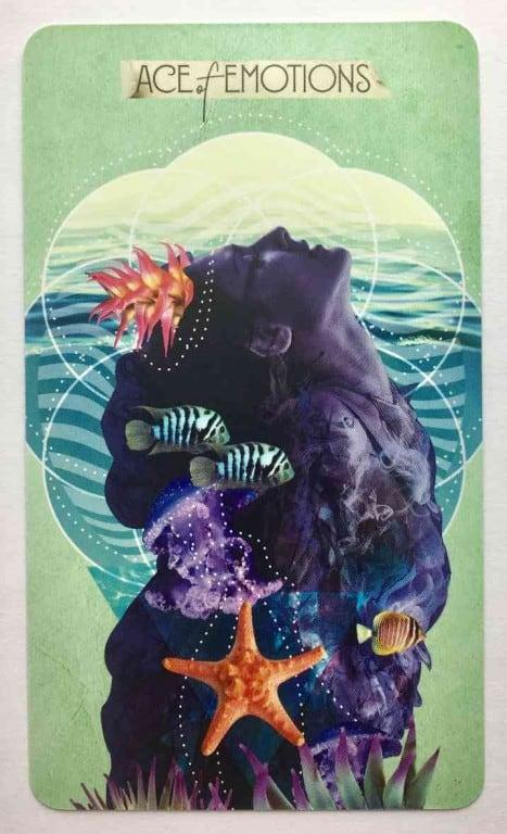 What Tarot Cards Represent Pisces? - Vekke Sind