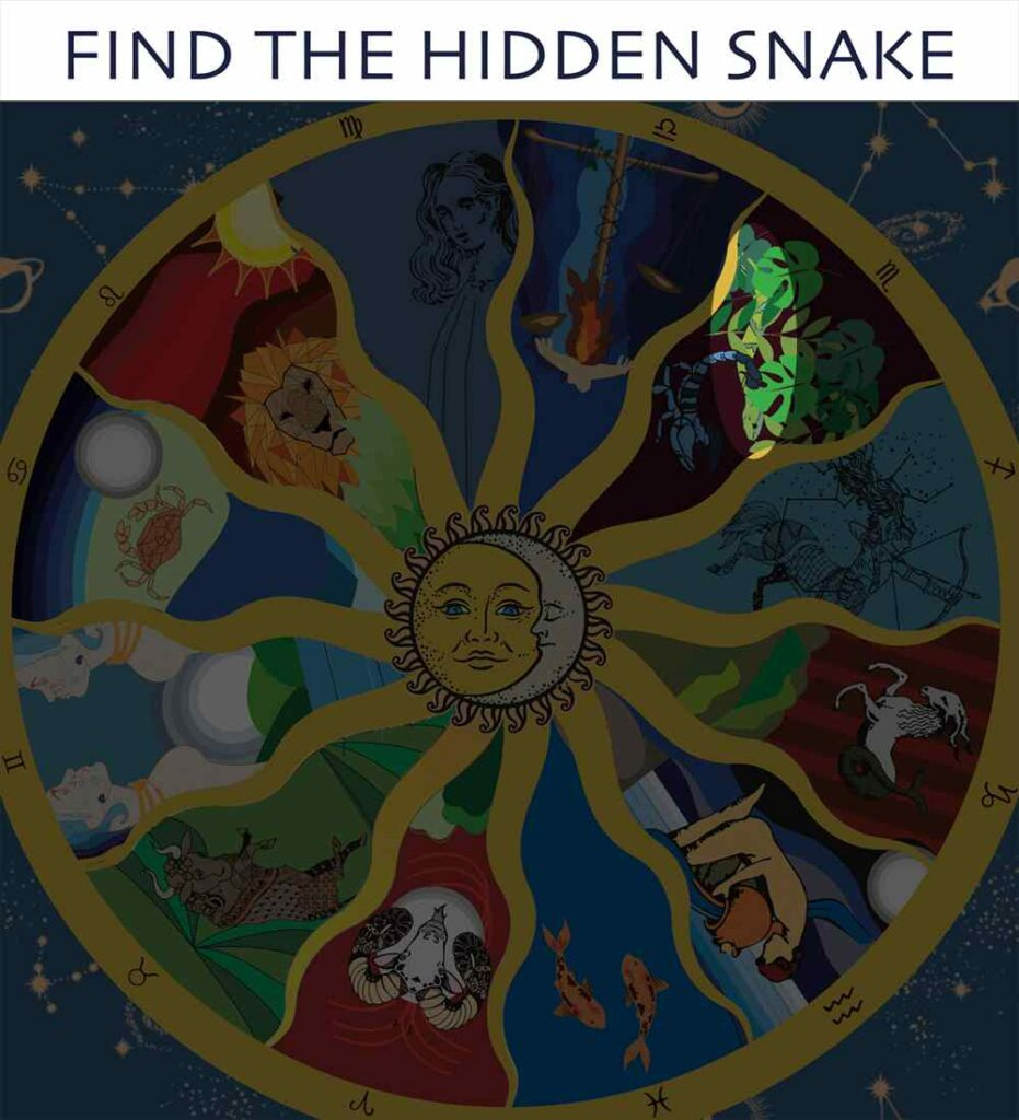 Find the snake - Answer